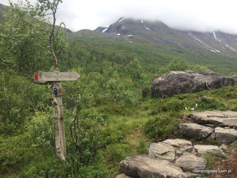 1321967846_Romsdalseggen2.jpg.a65ea7e180bfa133917cf4cd6b7a3e48.jpg